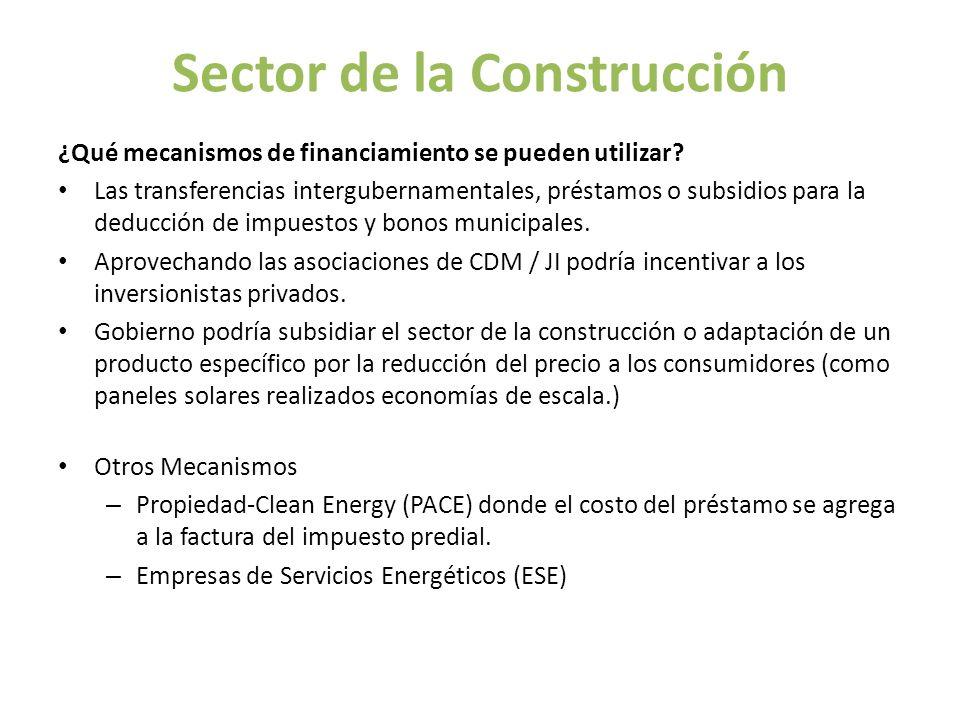 Sector de la Construcción ¿Qué mecanismos de financiamiento se pueden utilizar? Las transferencias intergubernamentales, préstamos o subsidios para la