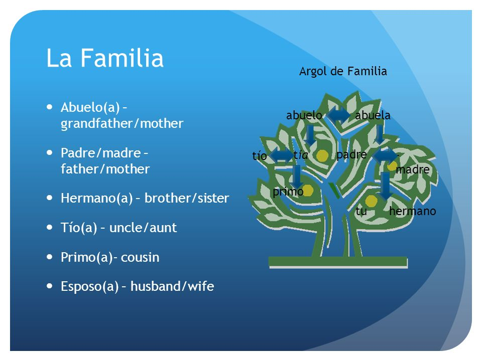 La Familia Abuelo(a) – grandfather/mother Padre/madre – father/mother Hermano(a) – brother/sister Tío(a) – uncle/aunt Primo(a)- cousin Esposo(a) – husband/wife abuelo -abuela tu padre - madre hermano tía primo tío Argol de Familia