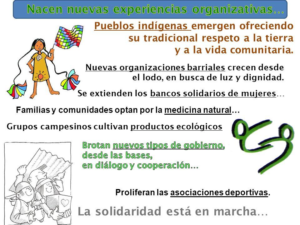 Grupos campesinos cultivan productos ecológicos La solidaridad está en marcha… Pueblos indígenas emergen ofreciendo su tradicional respeto a la tierra y a la vida comunitaria.