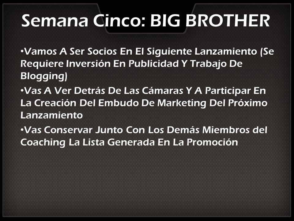 Semana Cinco: BIG BROTHER Vamos A Ser Socios En El Siguiente Lanzamiento (Se Requiere Inversión En Publicidad Y Trabajo De Blogging) Vas A Ver Detrás