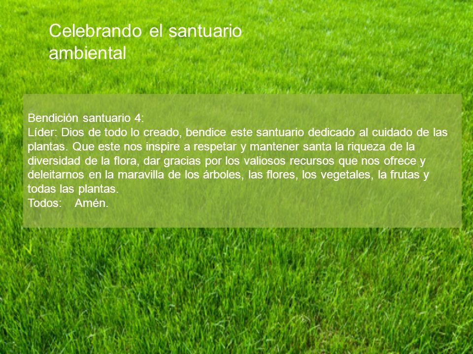 Bendición santuario 4: Líder: Dios de todo lo creado, bendice este santuario dedicado al cuidado de las plantas. Que este nos inspire a respetar y man