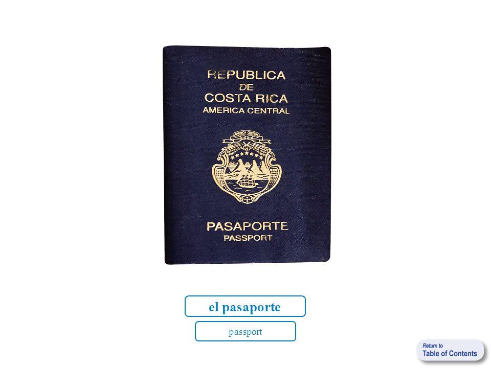 el pasaporte passport