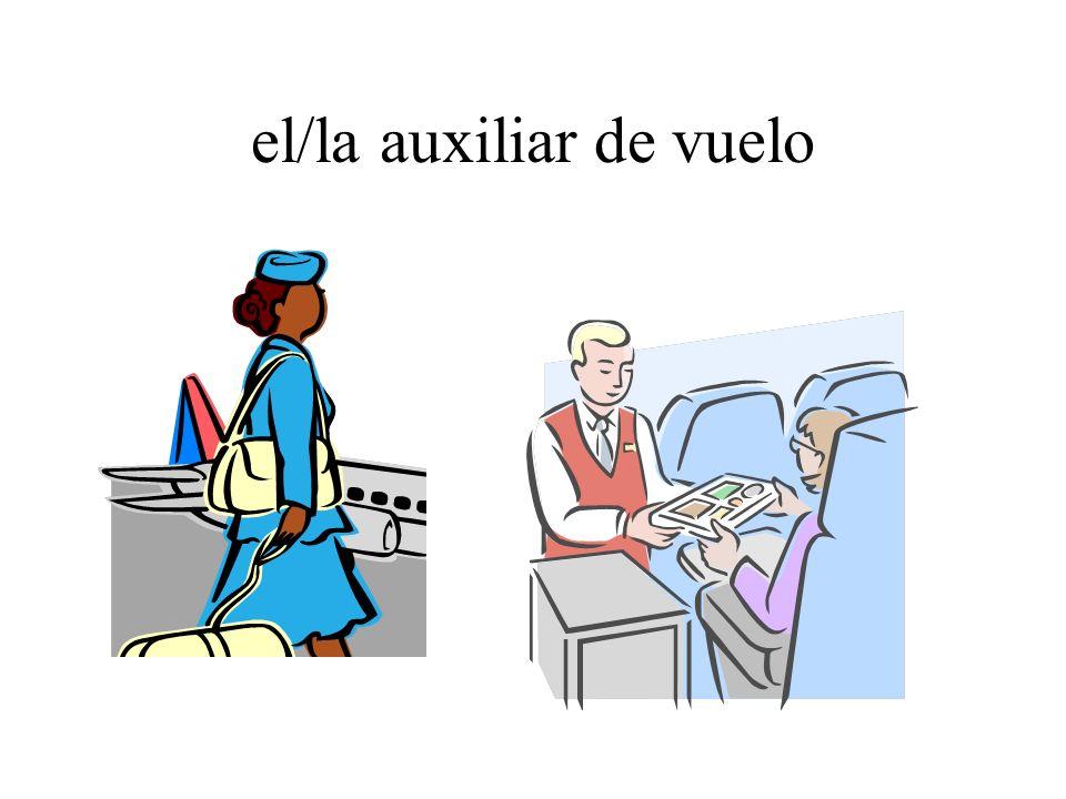 el/la auxiliar de vuelo