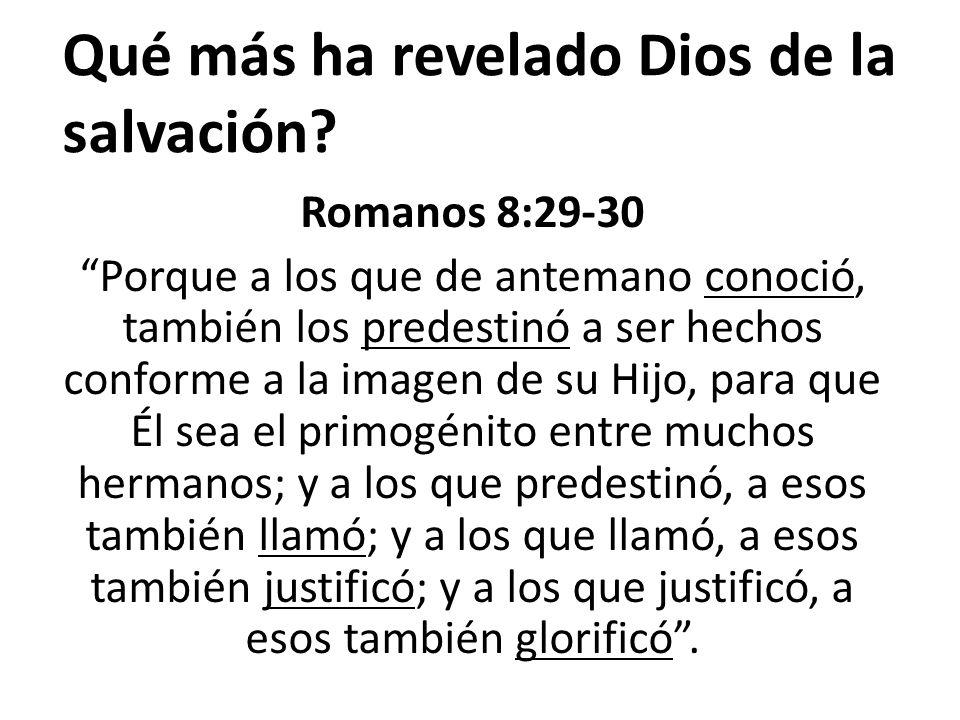 Romanos 8:29-30 Porque a los que de antemano conoció, también los predestinó a ser hechos conforme a la imagen de su Hijo, para que Él sea el primogén