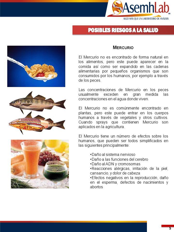 5 M ERCURIO El Mercurio no es encontrado de forma natural en los alimentos, pero este puede aparecer en la comida así como ser expandido en las cadena