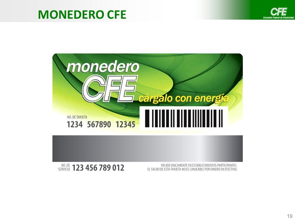 19 MONEDERO CFE