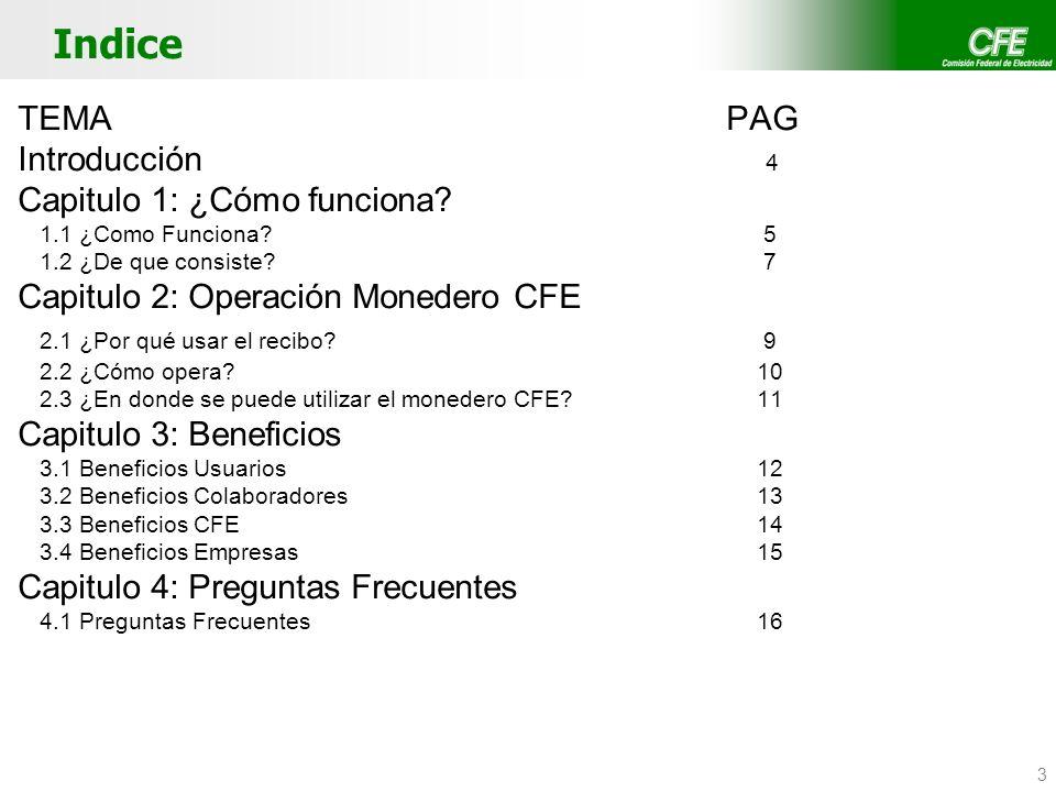 3 Indice TEMA PAG Introducción 4 Capitulo 1: ¿Cómo funciona? 1.1 ¿Como Funciona? 5 1.2 ¿De que consiste? 7 Capitulo 2: Operación Monedero CFE 2.1 ¿Por