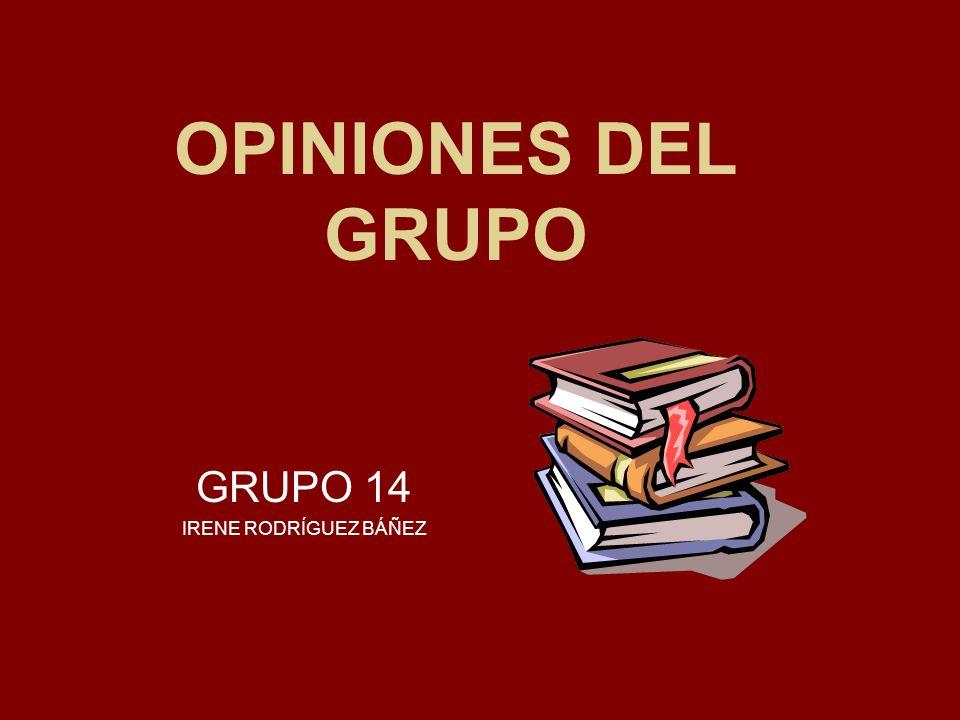OPINIONES DEL GRUPO GRUPO 14 IRENE RODRÍGUEZ BÁÑEZ