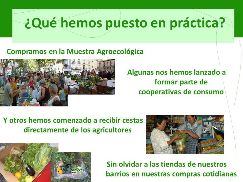¿Qué hemos puesto en práctica? Compramos en la Muestra Agroecológica Algunas nos hemos lanzado a formar parte de cooperativas de consumo Y otros hemos
