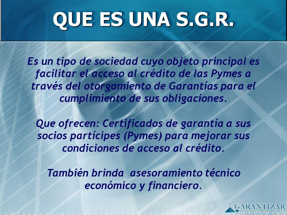 Es un tipo de sociedad cuyo objeto principal es facilitar el acceso al crédito de las Pymes a través del otorgamiento de Garantías para el cumplimient