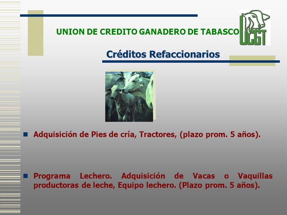Adquisición de Pies de cría, Tractores, (plazo prom. 5 años). Programa Lechero. Adquisición de Vacas o Vaquillas productoras de leche, Equipo lechero.