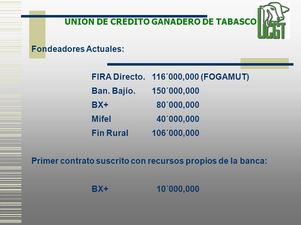 Fondeadores Actuales: FIRA Directo.116´000,000 (FOGAMUT) Ban. Bajío.150´000,000 BX+ 80´000,000 Mifel 40´000,000 Fin Rural106´000,000 Primer contrato s