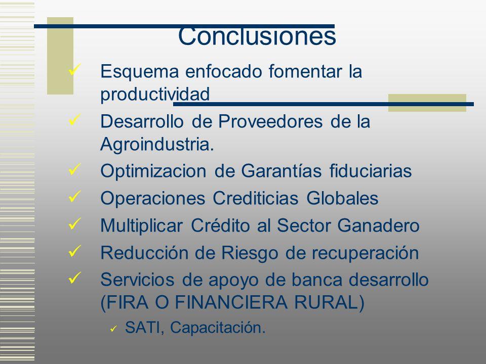 Conclusiones Esquema enfocado fomentar la productividad Desarrollo de Proveedores de la Agroindustria. Optimizacion de Garantías fiduciarias Operacion