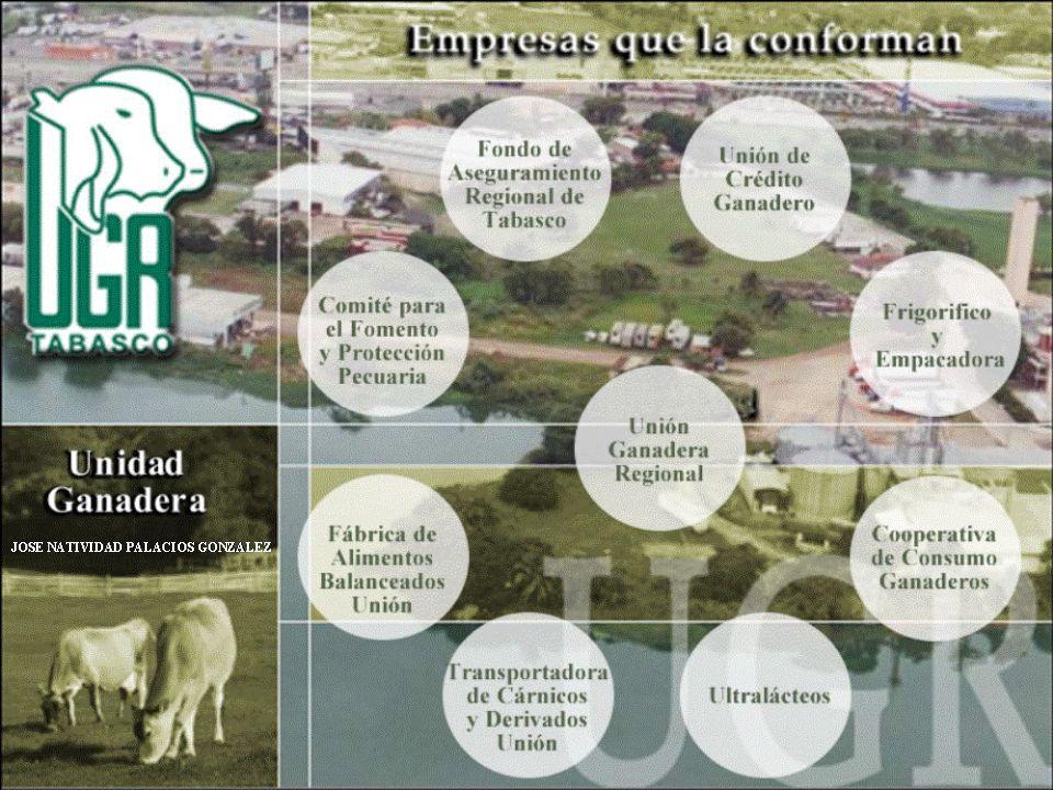 1er.ETAPA 2da. ETAPA BOLSA DE OFERENTES Y DEMANDANTES DEL NOVILLO MEDIANO.