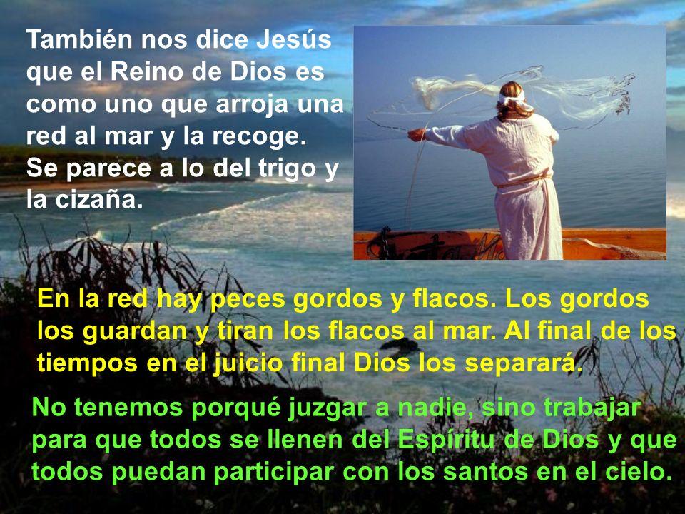 Lo cierto es que quien encuentra el tesoro de la fe, de la gracia, de la vida espiritual, tiene una vida de mayor alegría, como lo expresan los santos