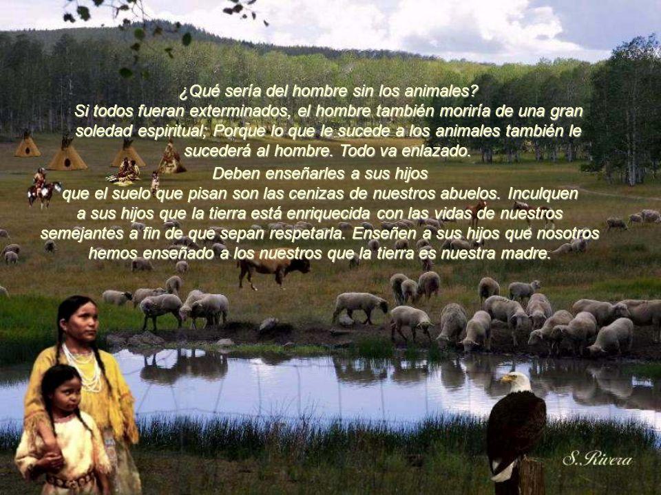 Soy un salvaje y no comprendo otro modo de vida. He visto a miles de búfalos pudriéndose en las praderas, muertos a tiros por el hombre blanco desde u