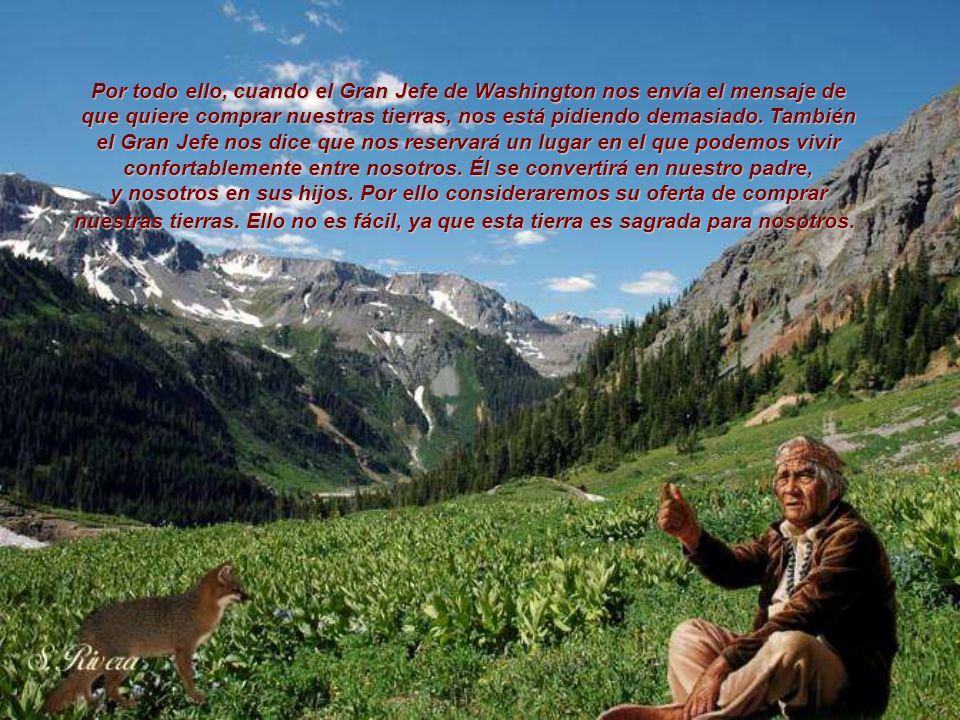 Somos parte de la tierra y asimismo ella es parte de nosotros. Las flores perfumadas son nuestras hermanas; el venado, el caballo, la gran águila; est