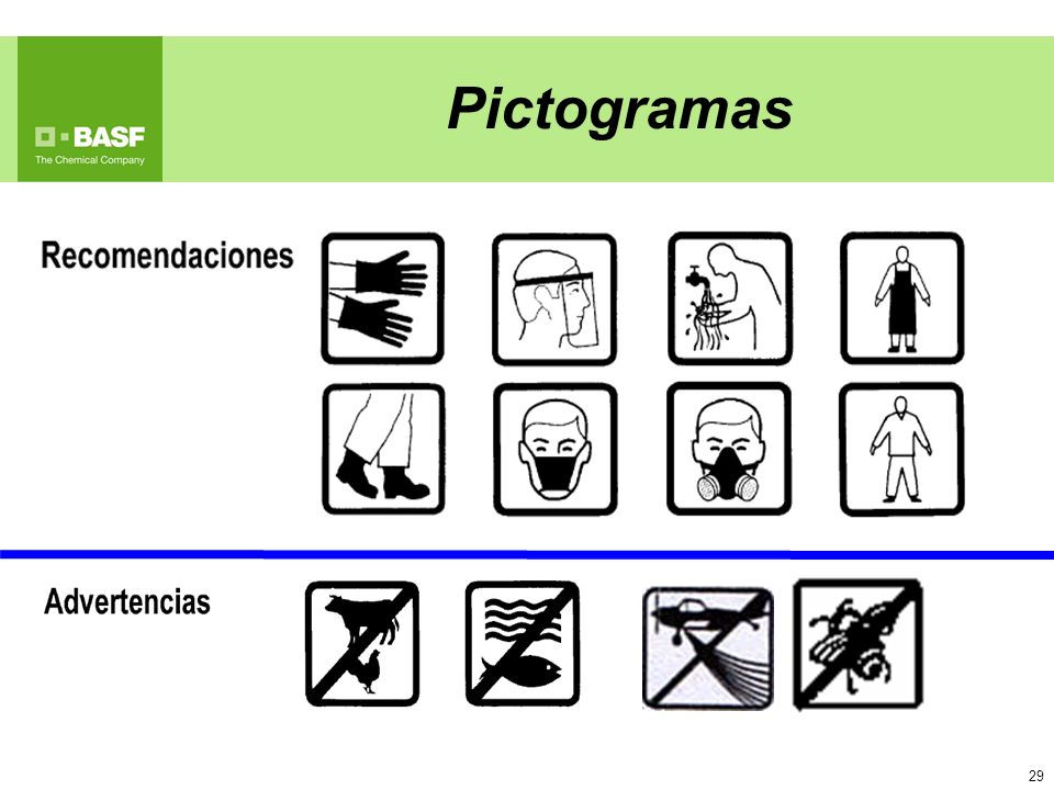 29 Pictogramas