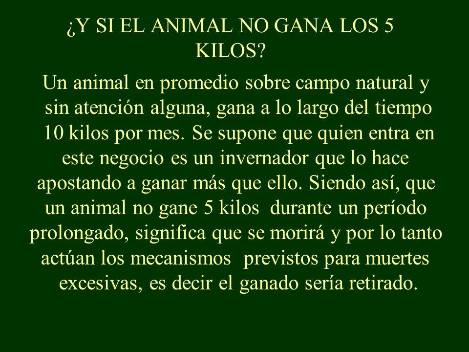 ¿QUÉ OTRA INCÓGNITA TENGO DESPUÉS DE COMPRAR EL ANIMAL.