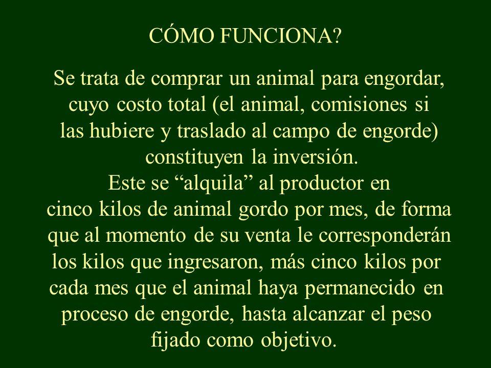 CÓMO FUNCIONA.