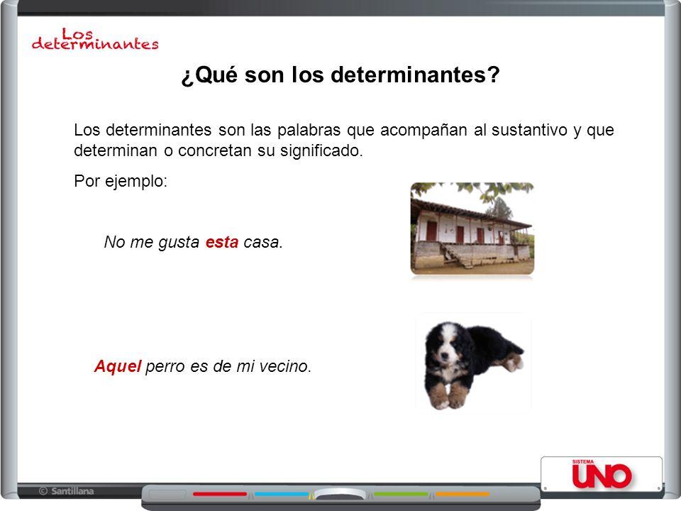 ¿Qué son los determinantes? Los determinantes son las palabras que acompañan al sustantivo y que determinan o concretan su significado. Por ejemplo: N