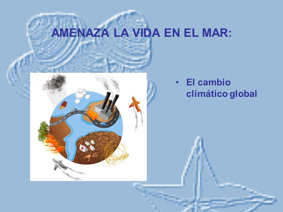 AMENAZA LA VIDA EN EL MAR: El cambio climático global