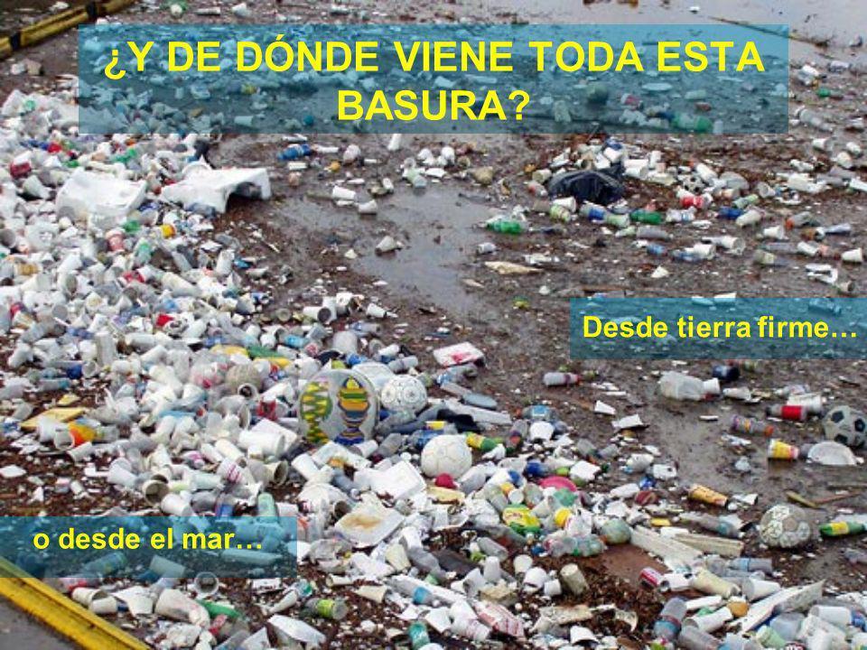 PROBLEMAS QUE GENERA Efecto sobre la salud de las personas Efectos económicos por pérdidas de recursos pesqueros o turismo Altos costos de limpieza Efectos sobre la vida marina