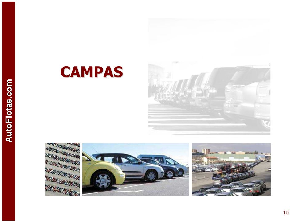AutoFlotas.com 9 Acceso Socio Profesional Pedidos a la carta de vehículos. Entrega en seis meses mínimo y con un kilometraje pactado en el pedido. Ten