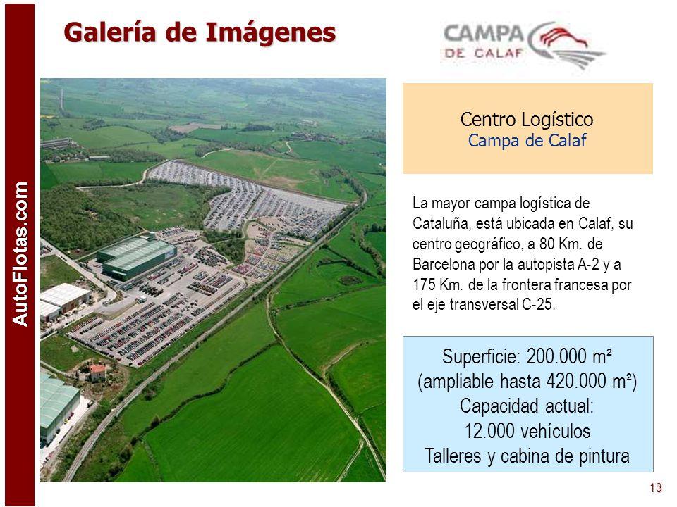 AutoFlotas.com 12 Centro Logístico Santa Perpetua de Mogoda (Barcelona) Centro logístico para el almacenamiento y tratamiento de vehículos (nuevos y u