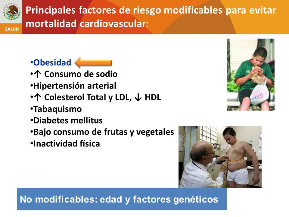No modificables: edad y factores genéticos Obesidad Consumo de sodio Hipertensión arterial Colesterol Total y LDL, HDL Tabaquismo Diabetes mellitus Ba