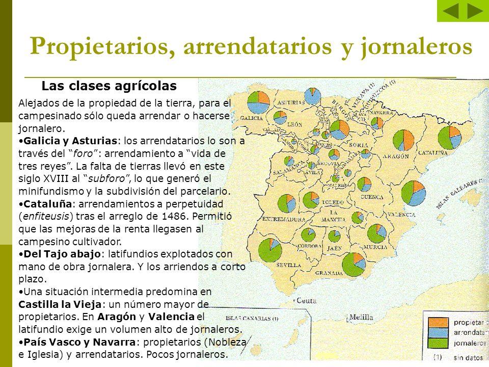 Propietarios, arrendatarios y jornaleros Las clases agrícolas Alejados de la propiedad de la tierra, para el campesinado sólo queda arrendar o hacerse