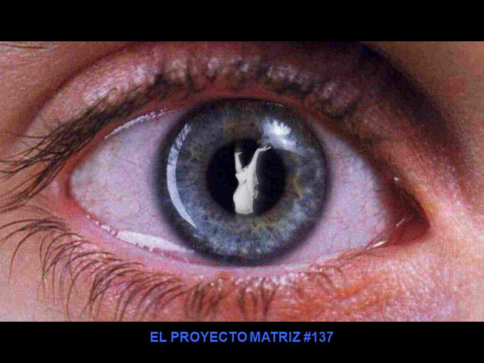 EL PROYECTO MATRIZ #137