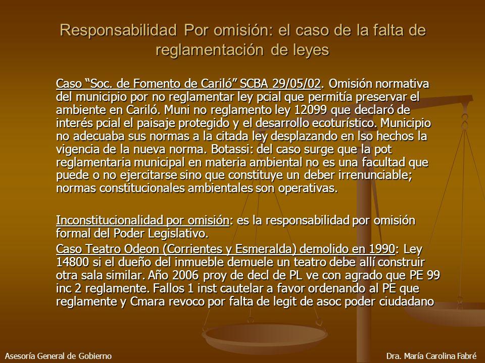 Responsabilidad Por omisión: el caso de la falta de reglamentación de leyes Caso Soc.