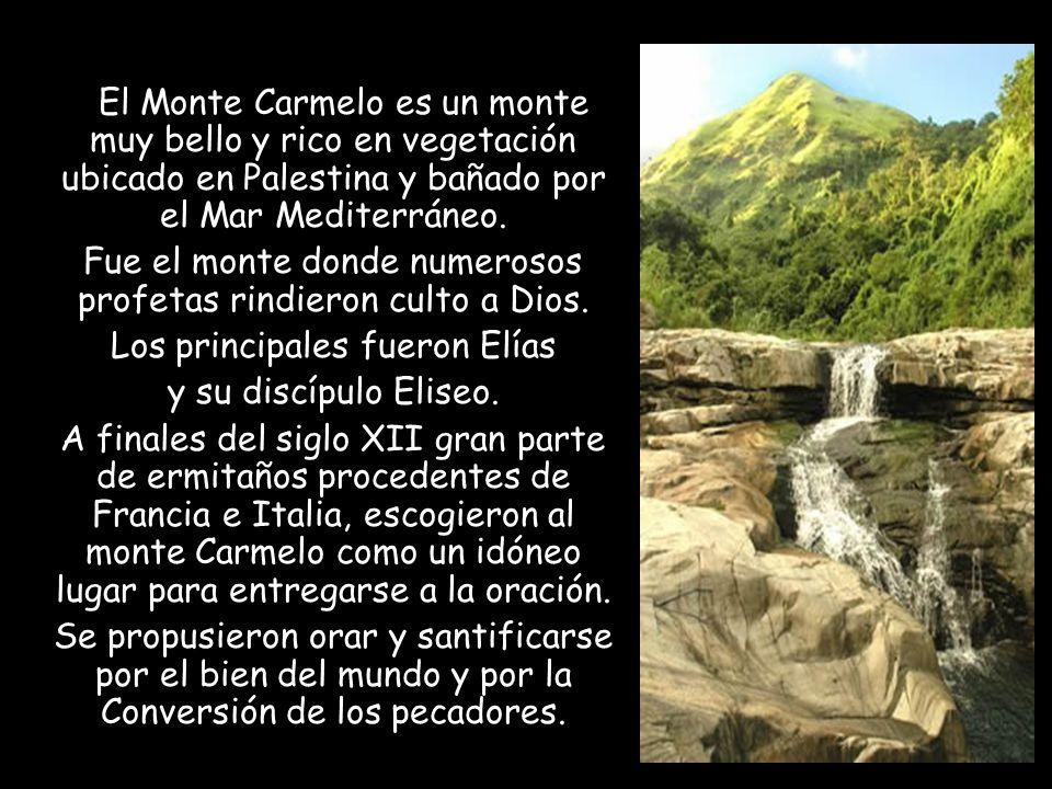El Monte Carmelo es un monte muy bello y rico en vegetación ubicado en Palestina y bañado por el Mar Mediterráneo.