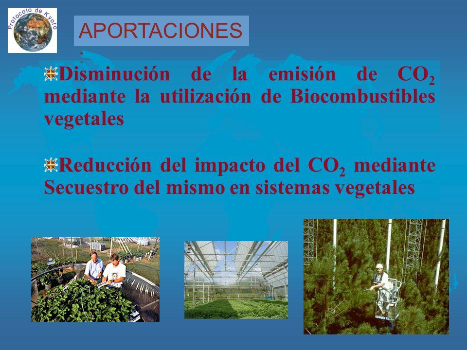 APORTACIONES : Disminución de la emisión de CO 2 mediante la utilización de Biocombustibles vegetales Reducción del impacto del CO 2 mediante Secuestro del mismo en sistemas vegetales