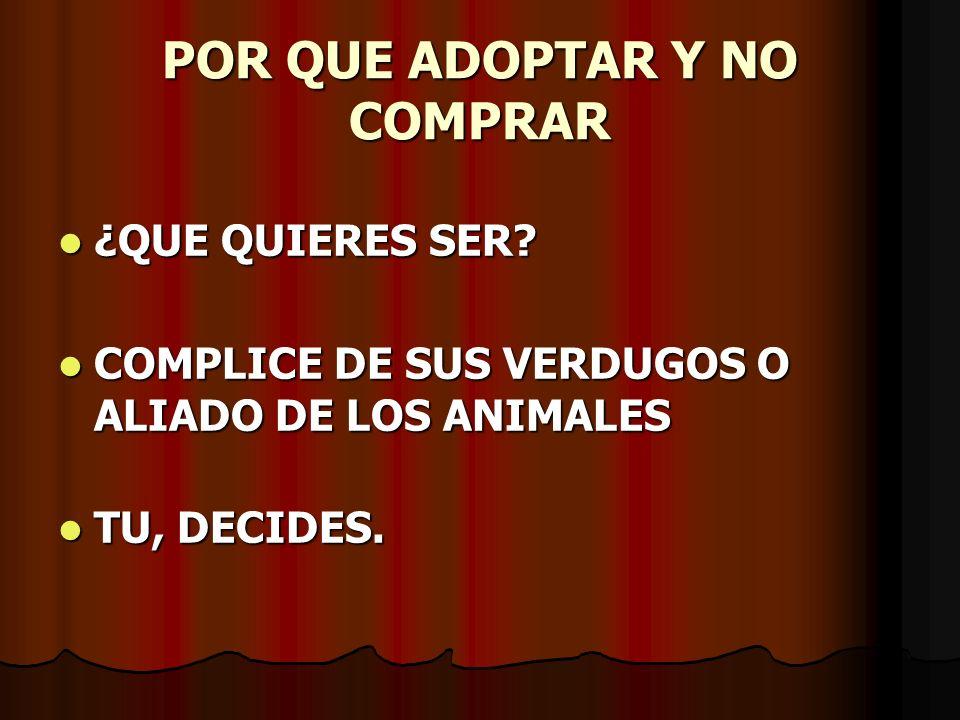 POR QUE ADOPTAR Y NO COMPRAR ¿QUE QUIERES SER? ¿QUE QUIERES SER? COMPLICE DE SUS VERDUGOS O ALIADO DE LOS ANIMALES COMPLICE DE SUS VERDUGOS O ALIADO D