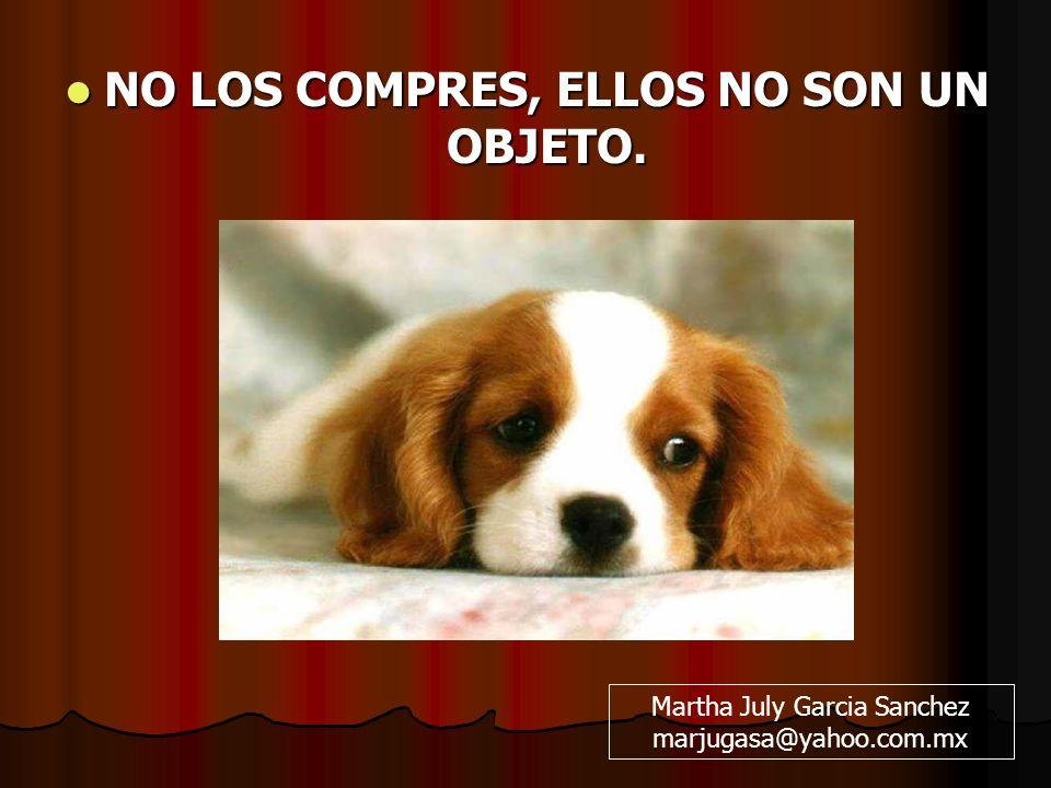 NO LOS COMPRES, ELLOS NO SON UN OBJETO. NO LOS COMPRES, ELLOS NO SON UN OBJETO. Martha July Garcia Sanchez marjugasa@yahoo.com.mx