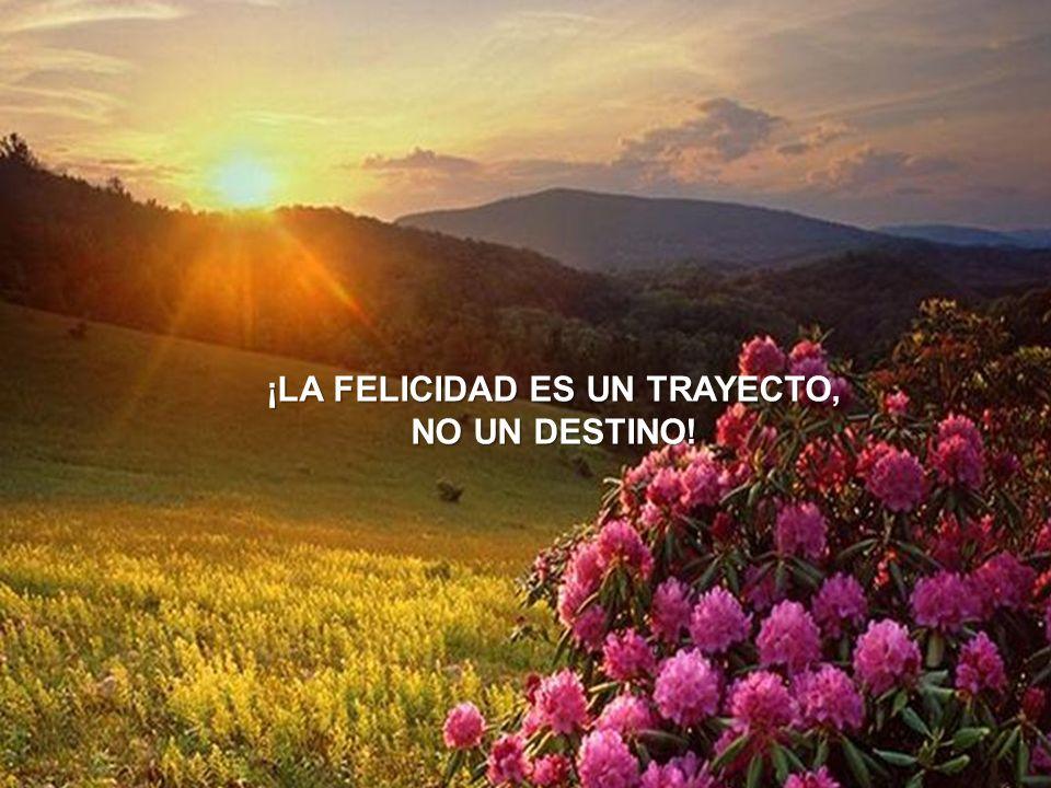 MORALEJA La verdadera felicidad consiste en amar lo que tenemos, y no sentirnos mal por aquello que no tenemos.