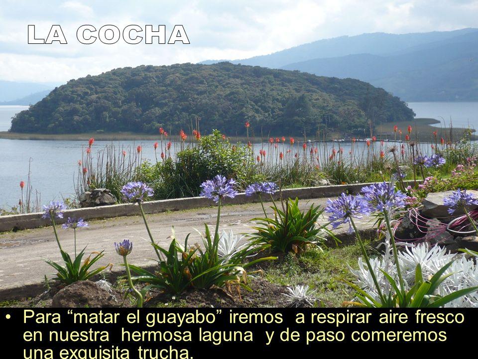 Para matar el guayabo iremos a respirar aire fresco en nuestra hermosa laguna y de paso comeremos una exquisita trucha.