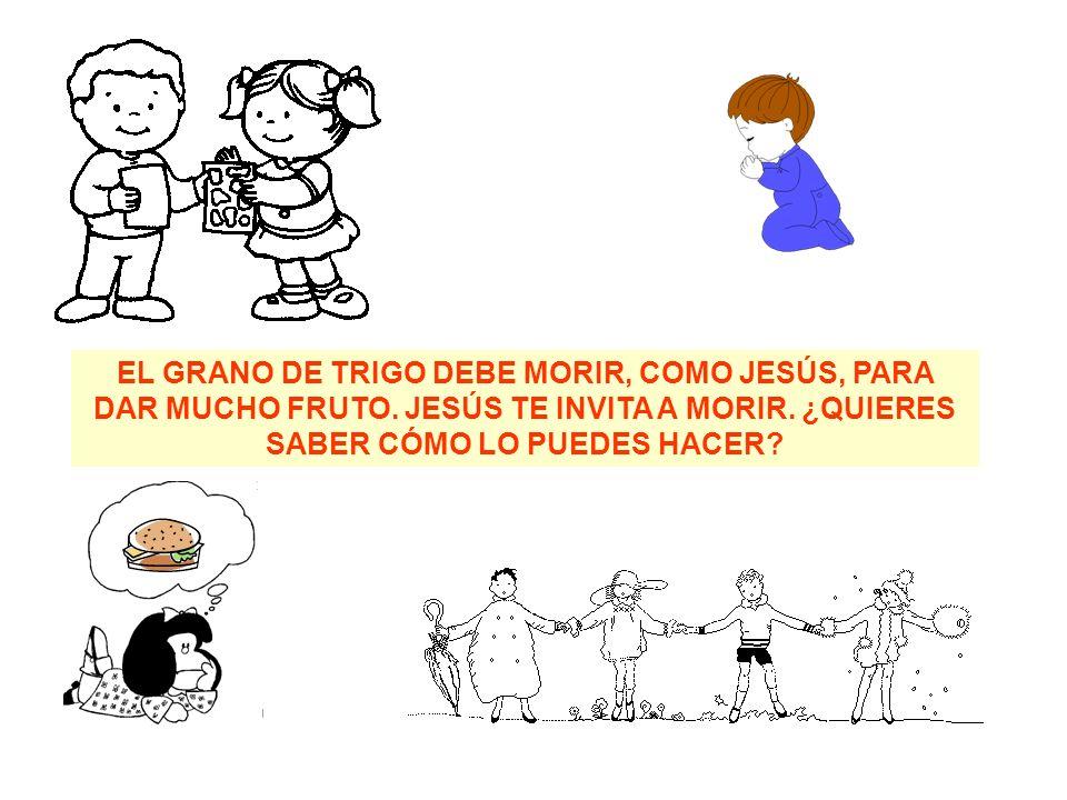 EL GRANO DE TRIGO DEBE MORIR, COMO JESÚS, PARA DAR MUCHO FRUTO.