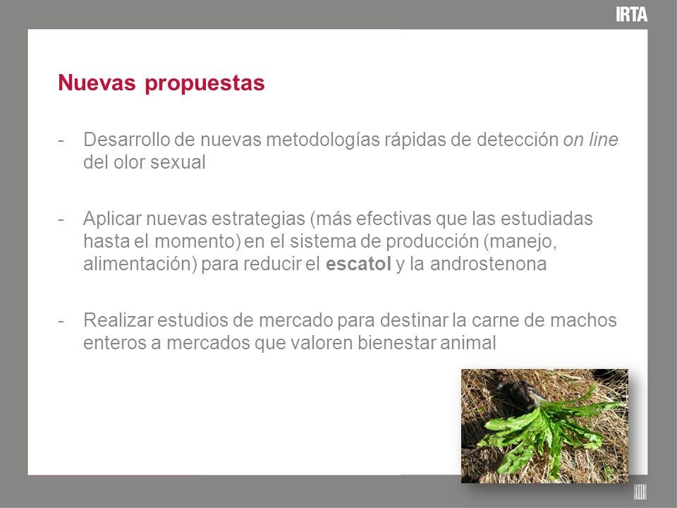 Nuevas propuestas -Desarrollo de nuevas metodologías rápidas de detección on line del olor sexual -Aplicar nuevas estrategias (más efectivas que las e