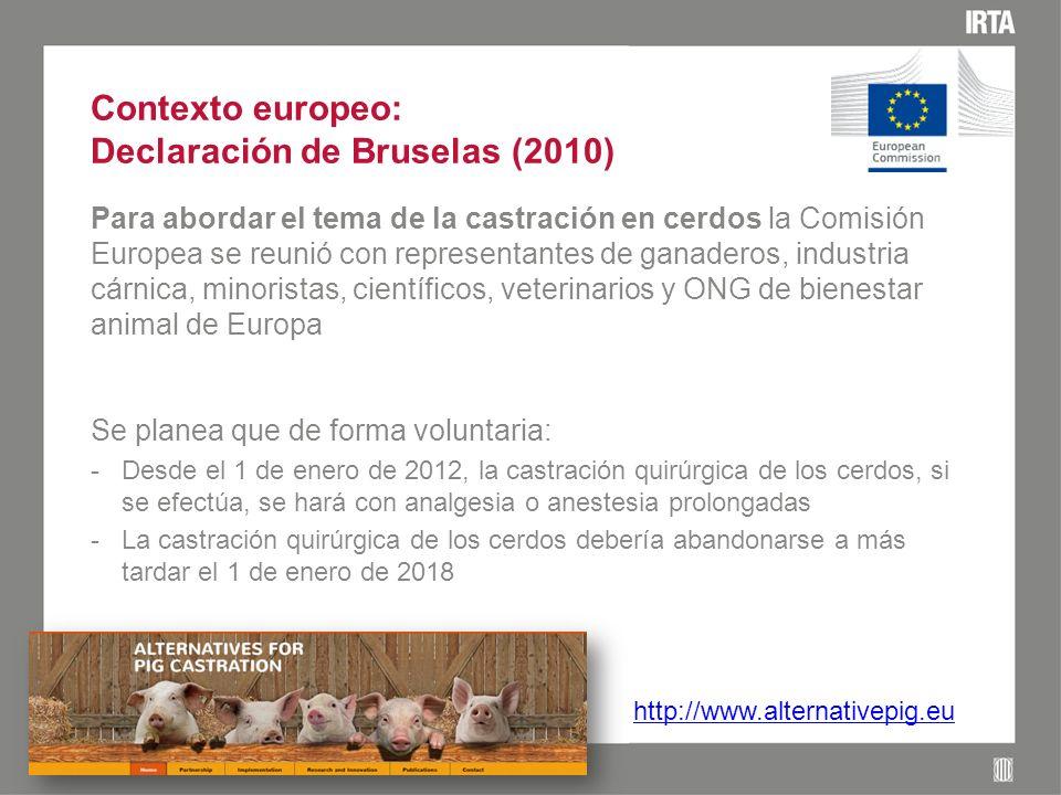 Contexto europeo: Declaración de Bruselas (2010) Para abordar el tema de la castración en cerdos la Comisión Europea se reunió con representantes de ganaderos, industria cárnica, minoristas, científicos, veterinarios y ONG de bienestar animal de Europa Se planea que de forma voluntaria: -Desde el 1 de enero de 2012, la castración quirúrgica de los cerdos, si se efectúa, se hará con analgesia o anestesia prolongadas -La castración quirúrgica de los cerdos debería abandonarse a más tardar el 1 de enero de 2018 http://www.alternativepig.eu