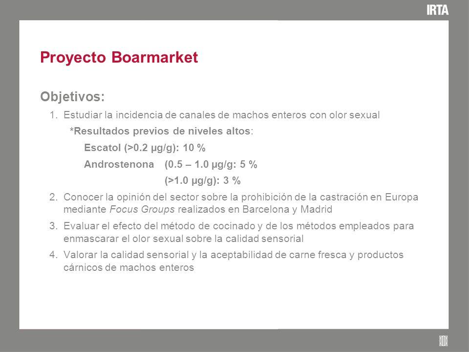 Proyecto Boarmarket Objetivos: 1.Estudiar la incidencia de canales de machos enteros con olor sexual *Resultados previos de niveles altos: Escatol (>0.2 µg/g): 10 % Androstenona(0.5 – 1.0 µg/g: 5 % (>1.0 µg/g): 3 % 2.Conocer la opinión del sector sobre la prohibición de la castración en Europa mediante Focus Groups realizados en Barcelona y Madrid 3.Evaluar el efecto del método de cocinado y de los métodos empleados para enmascarar el olor sexual sobre la calidad sensorial 4.Valorar la calidad sensorial y la aceptabilidad de carne fresca y productos cárnicos de machos enteros