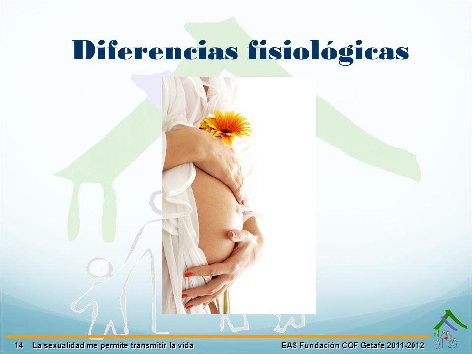 14 EAS Fundación COF Getafe 2011-2012 La sexualidad me permite transmitir la vida Diferencias fisiológicas