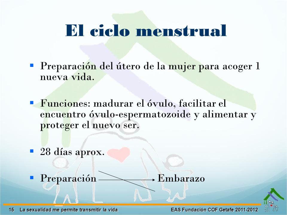 15 EAS Fundación COF Getafe 2011-2012 La sexualidad me permite transmitir la vida El ciclo menstrual Preparación del útero de la mujer para acoger 1 n