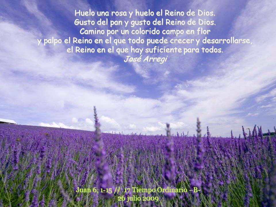 Huelo una rosa y huelo el Reino de Dios.Gusto del pan y gusto del Reino de Dios.