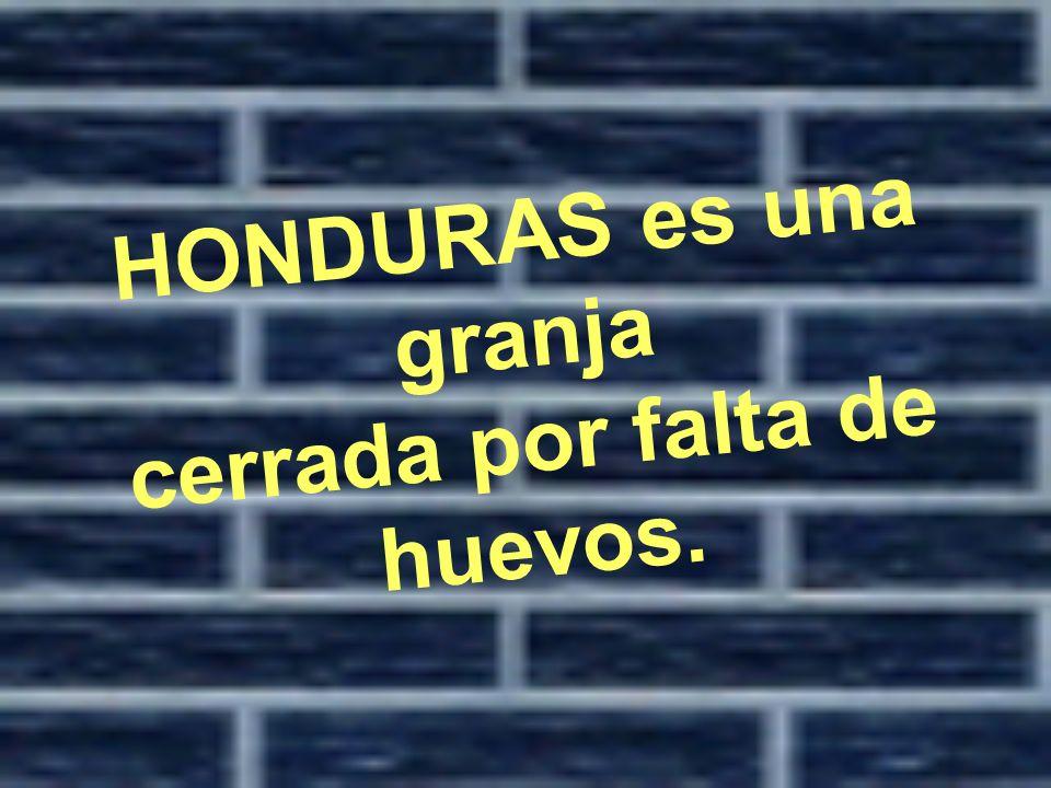 HONDURAS es una granja cerrada por falta de huevos.