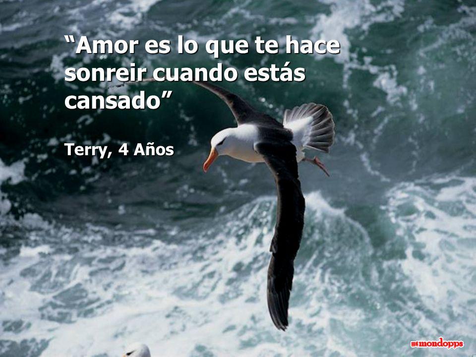 Amor es lo que te hace sonreir cuando estás cansado Terry, 4 Años