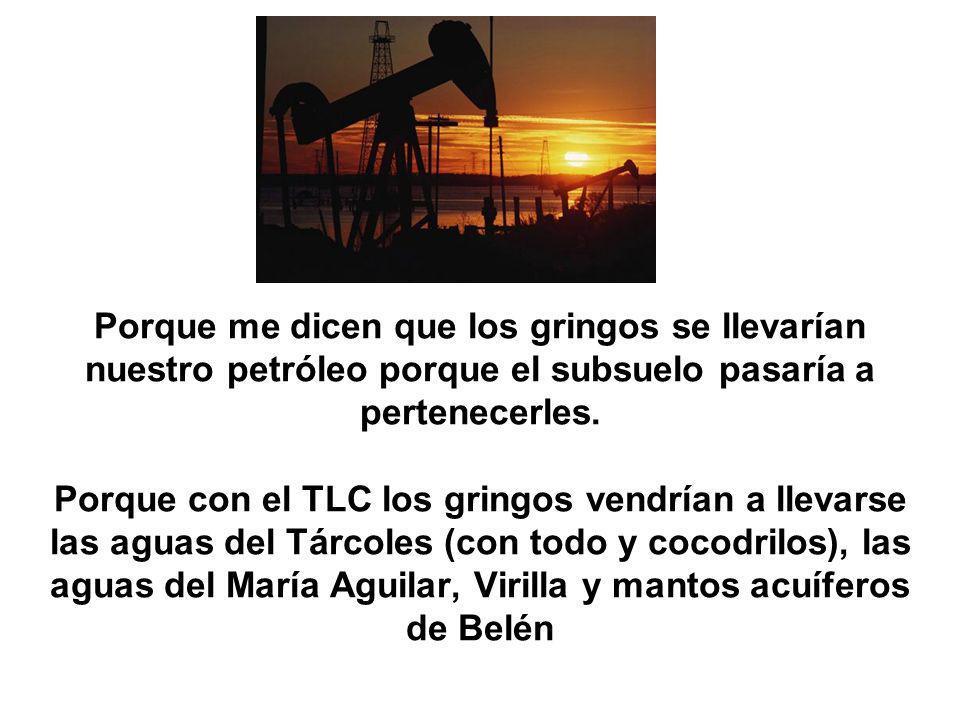 Porque me dicen que los gringos se llevarían nuestro petróleo porque el subsuelo pasaría a pertenecerles.