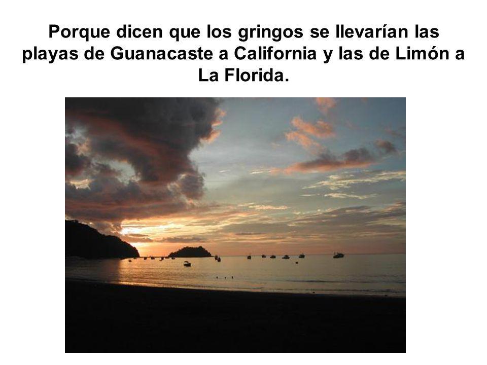 Porque dicen que los gringos se llevarían las playas de Guanacaste a California y las de Limón a La Florida.